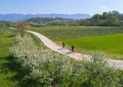 Cycling Alpe Adria